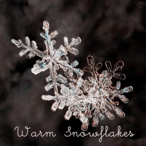 snowflake-heart